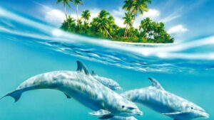 Dolphins Wallpaper HD